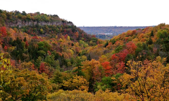 webster-falls-dundas-peak
